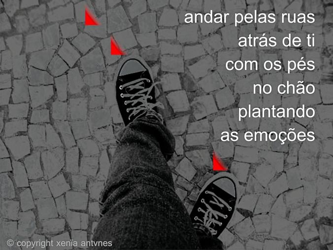 Andar pelas ruas atrás de ti com os pés no chão plantando as emoções.