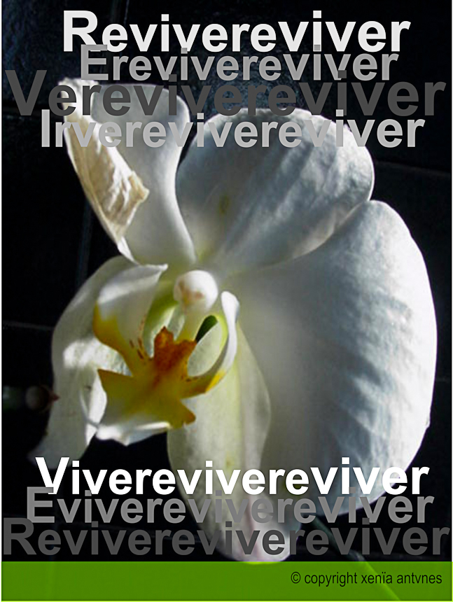 Poesia Visual: Viver e Reviver