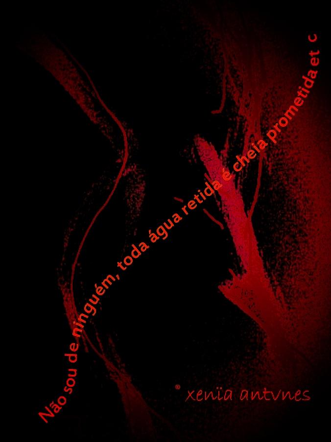 Poesia Visual: Não sou de ninguém...