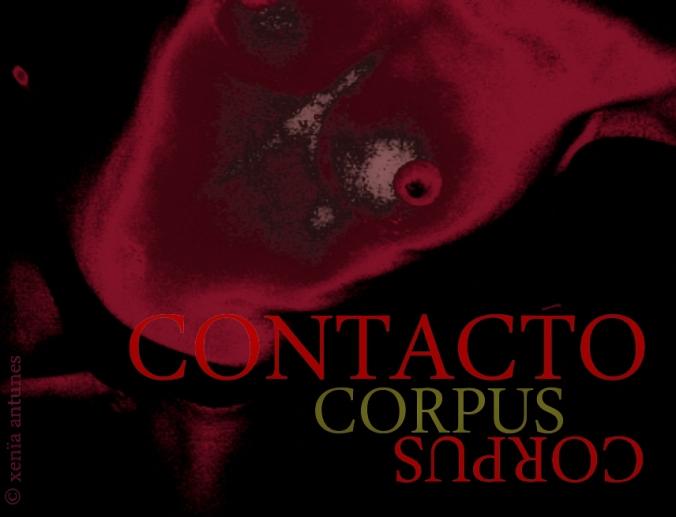 Corpus Contacto